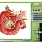 Test: Bioresonanzgeräte im Überblick 1