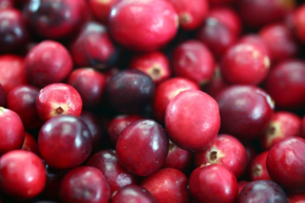 Cranberry, Preiselbeere