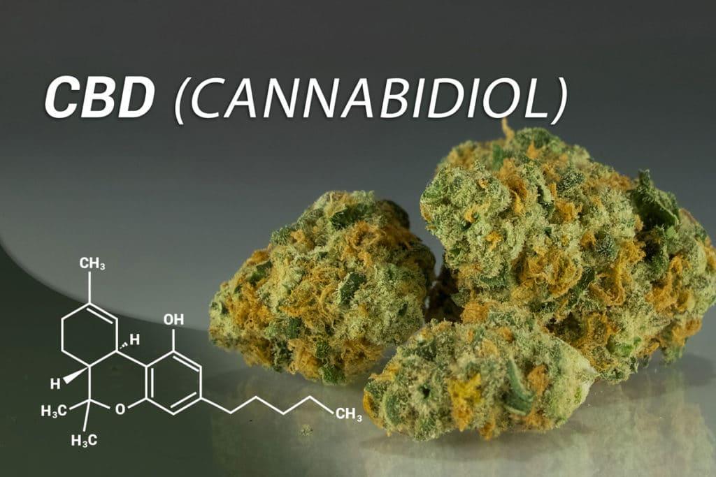 CBD-Öl Canobo Pur